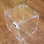 Acrylic Vivarium (Cube) (20x20x20cm)