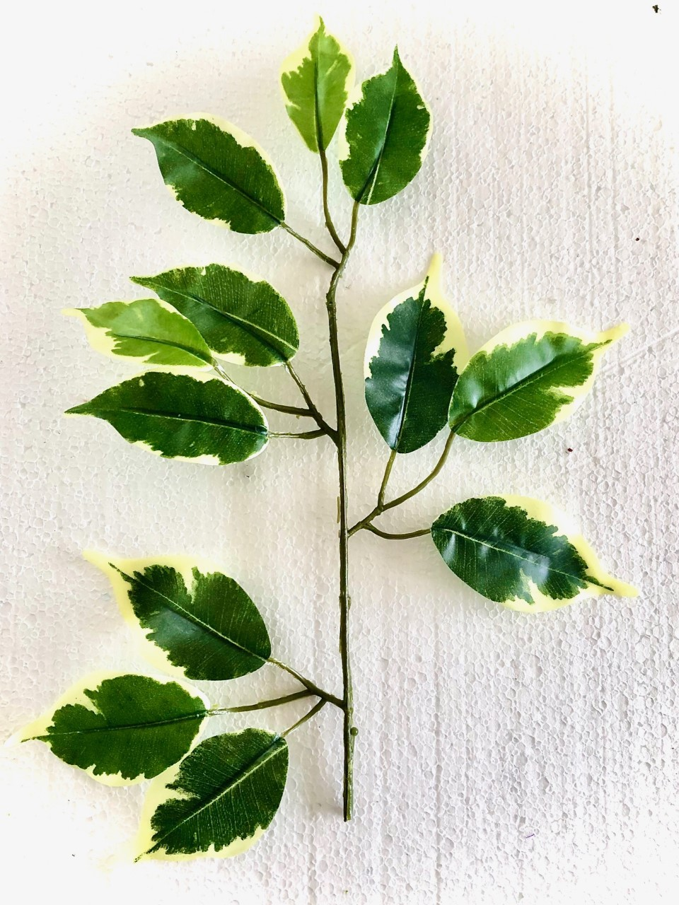 Fake 'Fresh' Ficus Branch/Leaves (30cm)