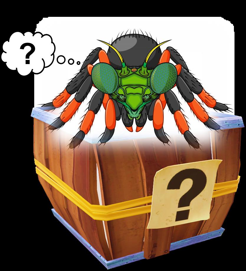Man-Tula Mystery Box